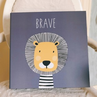 Memobox Photo Album 31.5*32*6  (600pcs 3R/8.9x12.7cm photo) - Brave