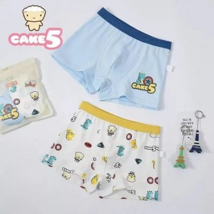 Cake 5 Kids Underwear 2pk Captain - Boys Shortie